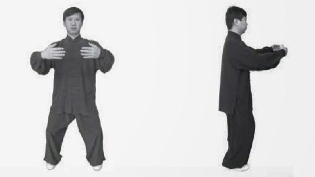 Pratica Zhan Zhuang