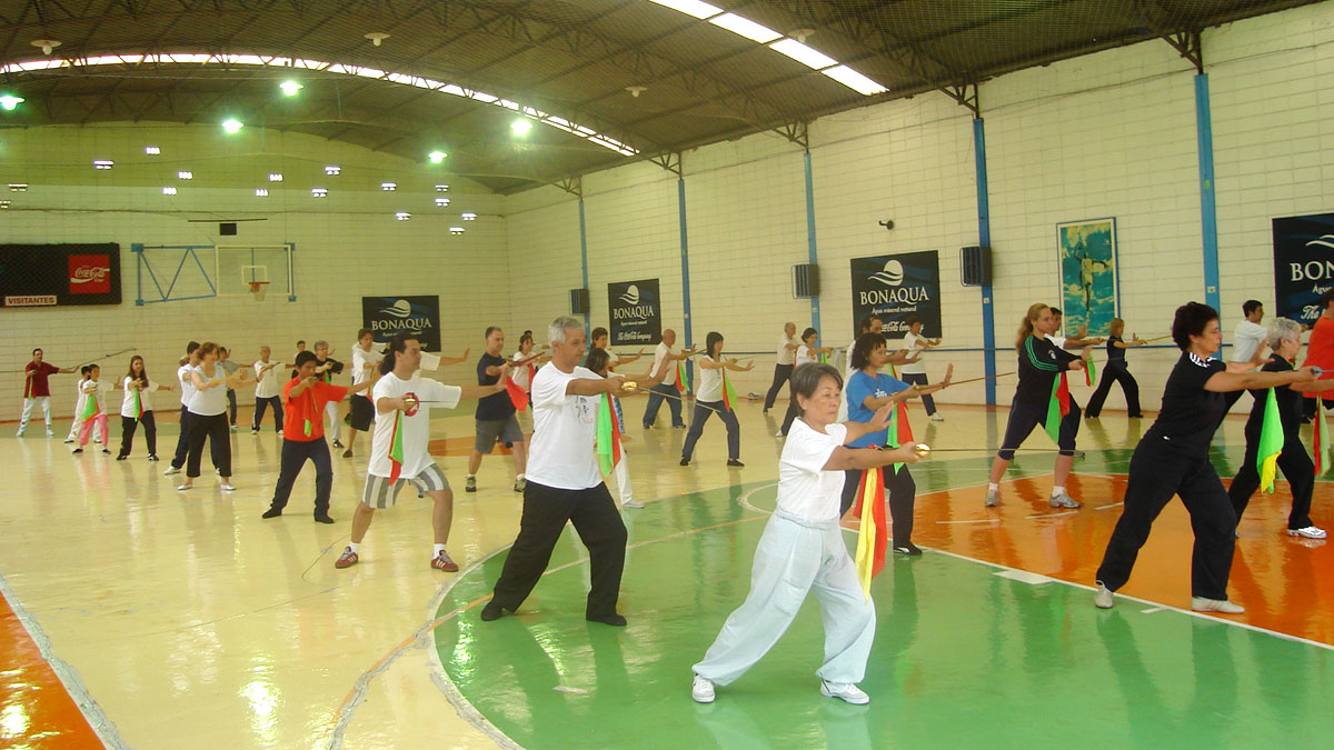 Seminário da Forma Sabre Tai Chi