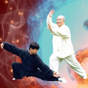 curso de introdução ao tai chi chuan